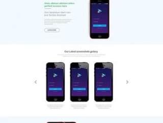 应用程序登录网页