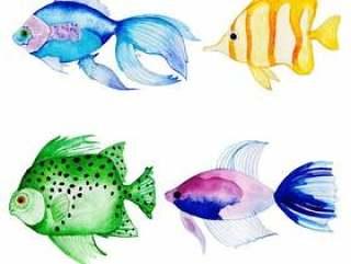 美丽的水彩鱼集合