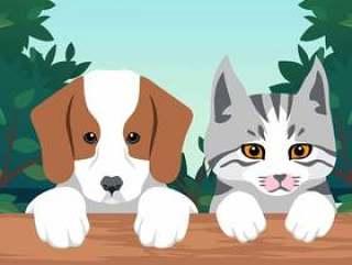 小狗和小猫画像