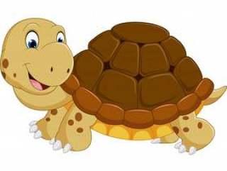 可爱的乌龟卡通运行