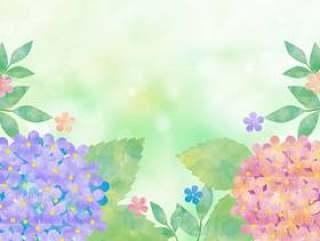 绣球花粉彩绿色背景