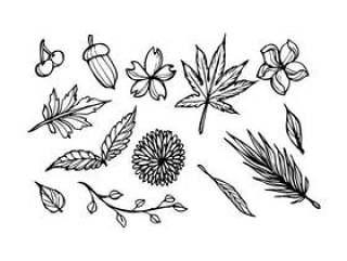 花卉素描图标矢量