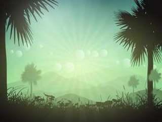 棕榈树景观