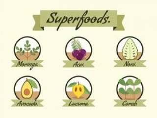 超级食物矢量插图