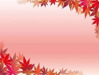 粉红色渐变背景上的枫叶框架。