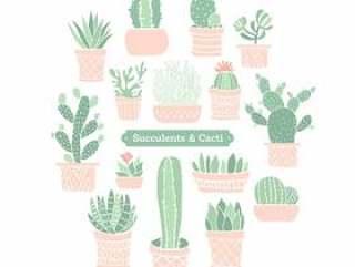 彩色的涂鸦盆栽多肉植物和仙人掌矢量