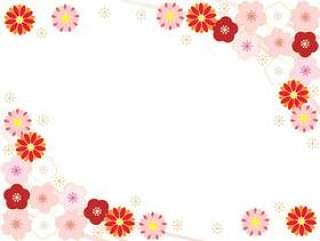 菊花,樱花,梅花3