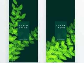 叶自然垂直横幅卡