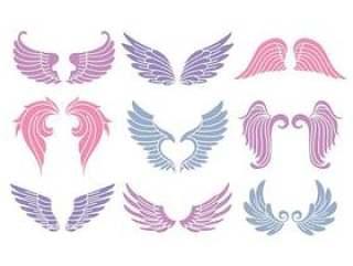 套可爱的天使的翅膀