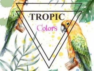 有水彩鹦鹉和棕榈叶的热带天堂