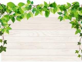 新鲜的绿色和木板框架