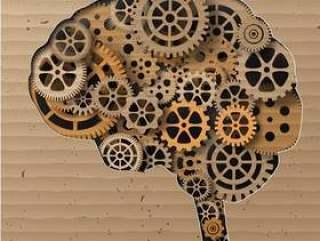人类的大脑建立了齿轮和齿轮