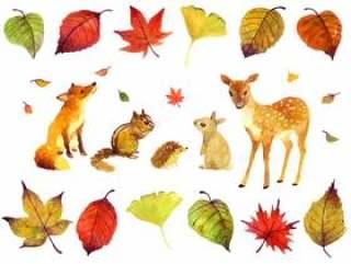 秋天的动物插图