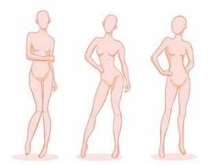 女性形成的时装模特矢量