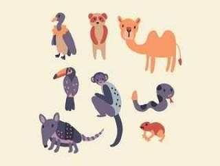 亚马逊动物