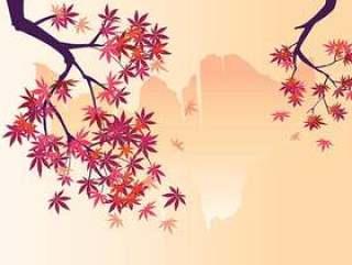 光滑的日本枫树植物瀑布背景和秋天的枫叶