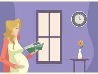 年轻的孕妇在窗口前阅读一本书在下午矢量