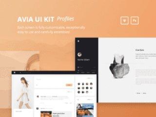 美丽的40模板配置文件工具包,Avia UI工具包:配置文件