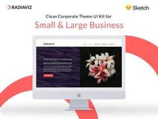 专为小型和大型企业制作的清洁企业主题.Radiaviz企业主题