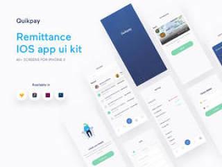 高质量的40+ iOS iPhone X汇款/转账款应用程序屏幕。,Quikpay Remittance IOS app ui kit