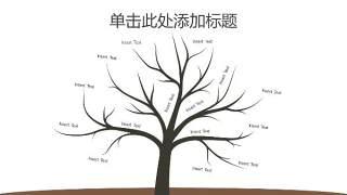 树状图PPT分类图表19