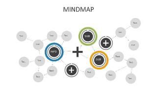 多彩思维导图PPT信息可视化创意图表24