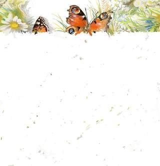 可爱的水彩无缝花卉和其他图案07