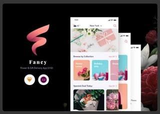 精美的应用程序用户界面工具包Fancy App UI Kit