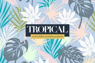 多彩的热带树叶图案AI矢量设计背景素材Colorful Tropical Foliar Seamless Patterns