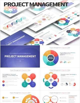 12套颜色商业公司项目管理战略规划信息图表PPT圆形可视化素材Project Management-PowerPoint Infographics