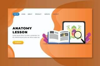 动物解剖学课程xd psd ai登录页UI界面矢量插画设计animal anatomy lesson xd psd ai landing page