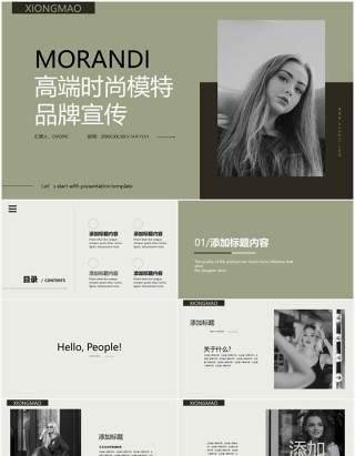 莫兰迪简约风品牌宣传介绍PPT模板