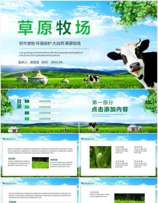 奶牛放牧环境保护大自然草原牧场动态PPT模板