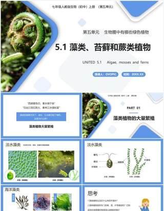 部编版七年级生物上册藻类、苔藓和蕨类植物课件PPT模板