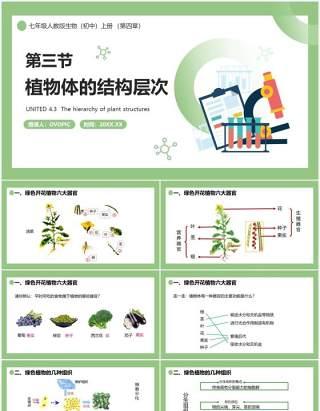部编版七年级生物上册植物体的结构层次课件PPT模板