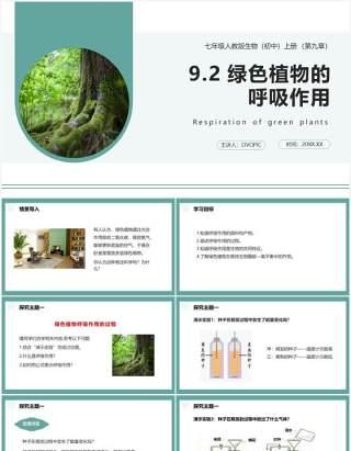 人教版七年级生物上册绿色植物的呼吸作用课件PPT模板