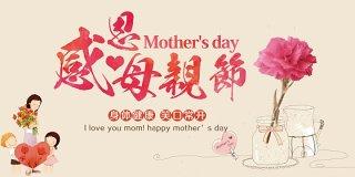 大气感恩母亲节展板海报设计