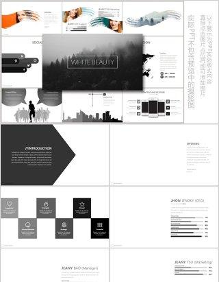 水墨个性产品介绍公司简介汇报PPT模板可插图片WHITE BEAUTY Powerpoint