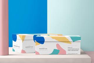 平面VI设计提案、包装盒、瓶子、纸袋智能贴图样机场景模板PSD素材3
