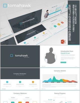 并列关系信息图表PPT素材模板Tomahawk Powerpoint Template